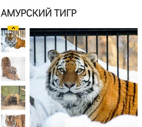 Photo_20210720204001